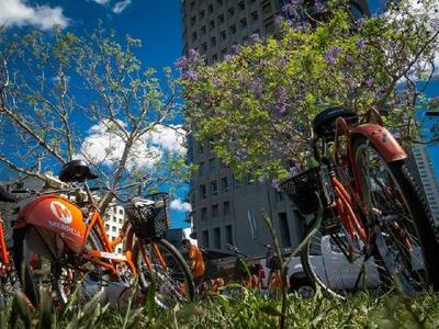 1-Day Buenos Aires Bike Tour: North Districs