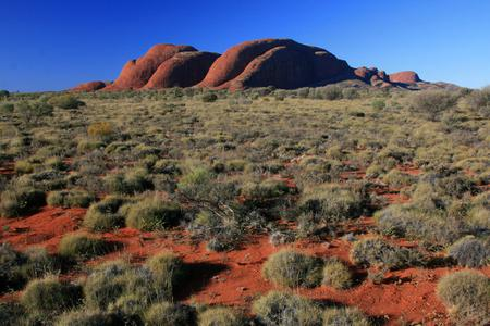 10-Hour Palm Valley Tour from Alice Springs