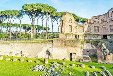 Skip-the-Line Roman Forum, Palatine Hill and Colosseum Tour
