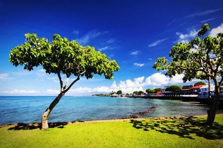 6-day Pearl Harbor, Honolulu, Little Circle Island, Polynesian Cultural Center, Maui or Big Island Tour Package(Value Tour)