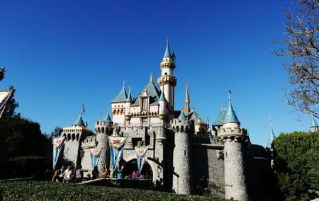 Disneyland Tour (All Day and Evening)