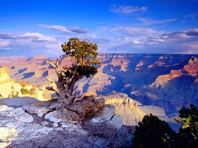 Phoenix Grand Canyon Helicopter Adventure