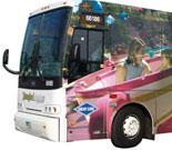 Disneyland Resort Express-Hotel to John Wayne Airport-One Way  Transportation