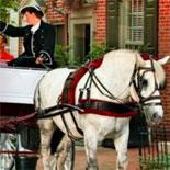 Philadelphia 20 Minute Carriage Tour