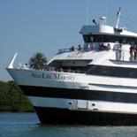 Majesty Luncheon Sightseeing Cruise