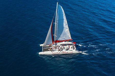 Full-Day Mega Catamaran Excursion to Bol Including Golden Horn