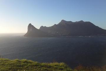 Cape Peninsula: Private Day Tour from Cape Town