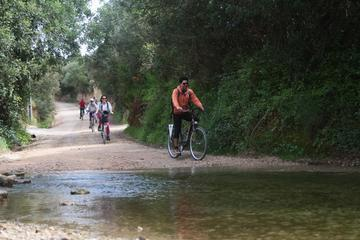 Small-Group Adventure: Biking the Ecovia do Algarve