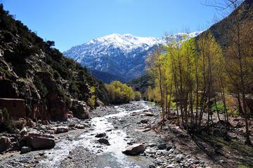 Ourika Valley and Atlas Mountain Day Tour from Marrakech