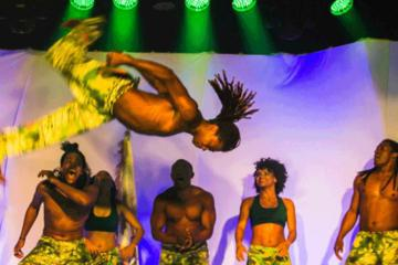Ginga Tropical - Brazilian Folklore Show