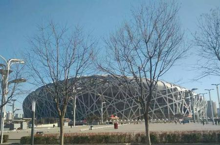 Coach Day Tour: Beijing Zoo, Yonghe Temple and Ancient Hutongs with Rickshaw Ride