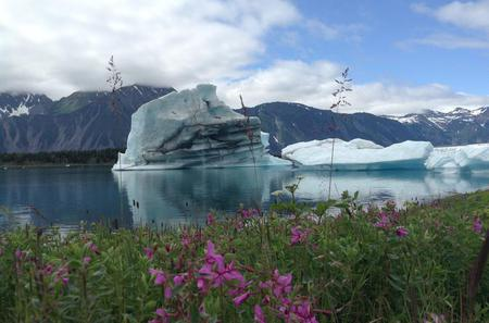 Helicopter Flightseeing Tours - Seward Alaska