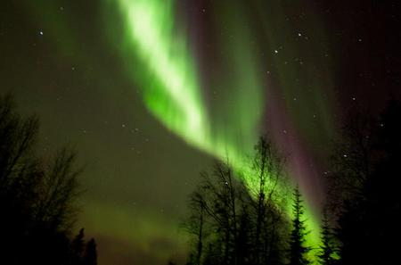 Lapland Aurora Borealis Picnic from Rovaniemi