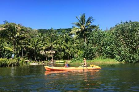 Guided Kayak Adventure on the Wailua River
