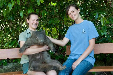Zootastic Experience at Hartley's Crocodile Adventure from Cairns or Palm Cove