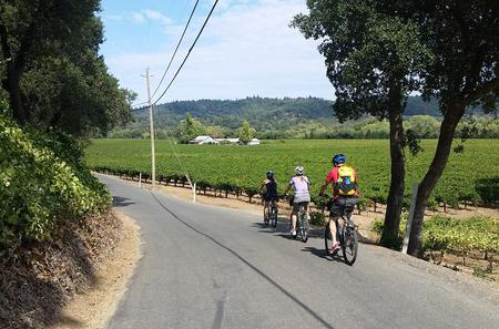 Sonoma Valley Wine Country Bike Tour