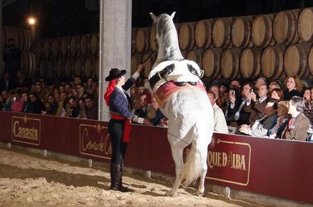 Jerez and Cadiz Day Trip from Costa del Sol with Winery Tour, Andalusian Horse Show and Sightseeing Cruise