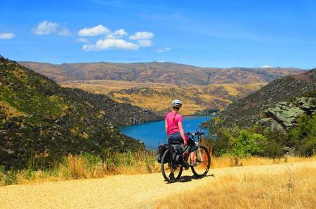 Full-Day Roxburgh Gorge Cycle Tour from Queenstown