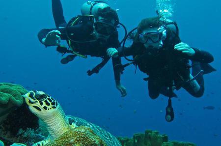 Beginner Scuba Diving Experience in Padangbai