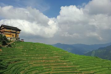 Longji Rice Terraces and Long Hair Village Private Day Tour