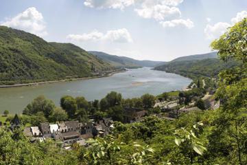 Frankfurt Super Saver: City Highlights Tour plus Rhine Valley Cruise and Wine Tasting