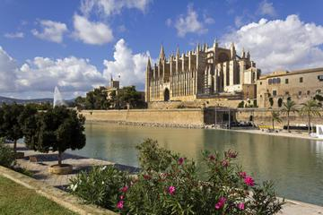 Private Tour: Palma de Mallorca Old Town, Palma Cathedral and Cruise