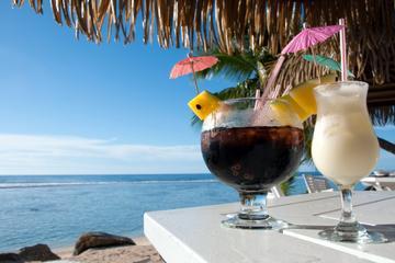 Road Town Shore Excursion: Tortola Party Bus Tour
