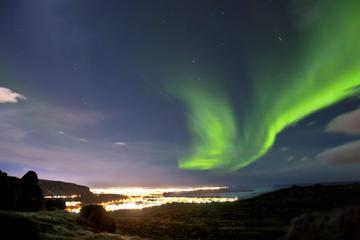 Iceland Super Saver: Northern Lights Cruise plus Whale-Watching Tour from Reykjavik