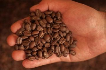 Bogotá Coffee Crawl