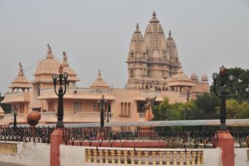 Historic Delhi Morning Tour Including Chattarpur Temple and Qutub Minar with Tuk-Tuk Ride