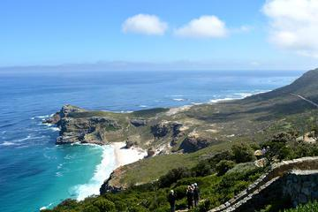 Private Tour: Cape Peninsula and Boulders Beach Penguins Day Trip from Cape Town