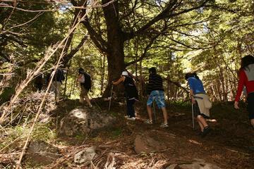 Cerro Colorado Trekking Tour from San Martin de los Andes