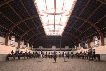 Unexpected Paris: Training of the French Horse Guards