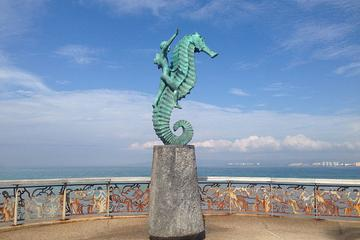 Puerto Vallarta City and Shopping Tour with Tequila Distillery