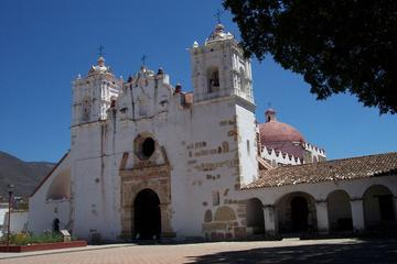 El Tule Teotitlan Village and Mitla Ruins Tour from Oaxaca