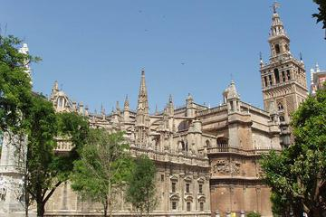 Seville Guided Tour into Alcazar and Cathedral