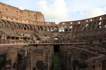 Skip the Line: Colosseum Roman Forum and Palantine Hill Elite Tour