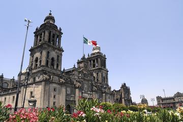 Mexico City Sightseeing Tour with Anthropology Museum and Behind-the-Scenes at Bellas Artes