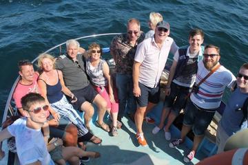 Private Dolphin Safari Charter in Gibraltar
