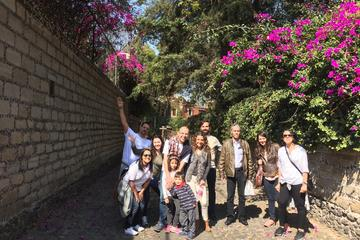 Mexico City Super Saver: Polanco and San Angel Food Tours