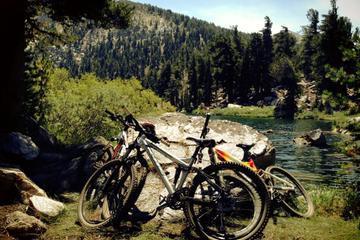 South Lake Tahoe Bike Rental