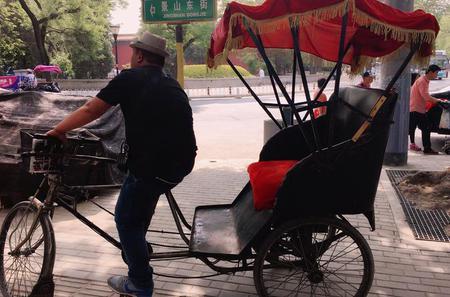Private Cultural Tour: Hutong Rickshaw Ride and Dumpling Making in Beijing