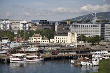 All-Inclusive Oslo City Tour: Viking Ship Museum, Vigeland Park, Polarship and Fram Museum or Kon-Tiki Museum