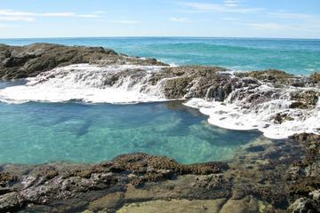 5-Day Fraser Island and Great Barrier Reef Tour