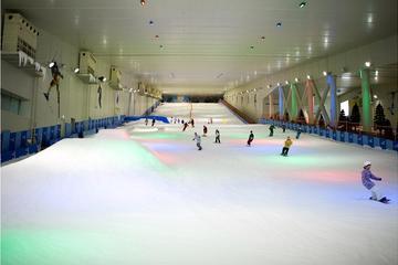 Summer Snow Ski Day in Seoul