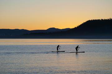 South Lake Tahoe Stand-Up Paddleboard Rental