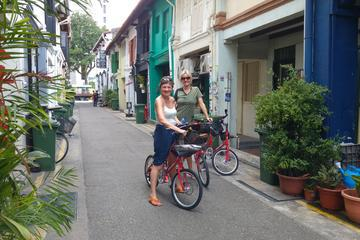 Small Group: Singapore Bike Tour With a Local