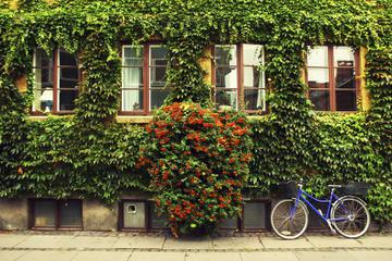 Private Tour: Copenhagen City Bike Tour