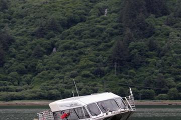 Juneau Shore Excursion: Douglas Island Zipline Tour from Juneau