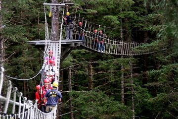 Ketchikan Shore Excursion: Rainforest Zipline Adventure